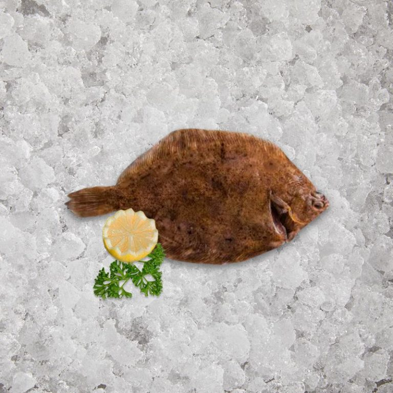 fresh_caught_lemon_sole