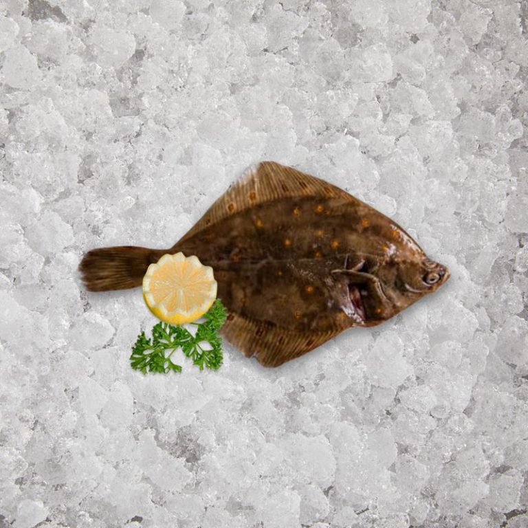 fresh_caught_plaice