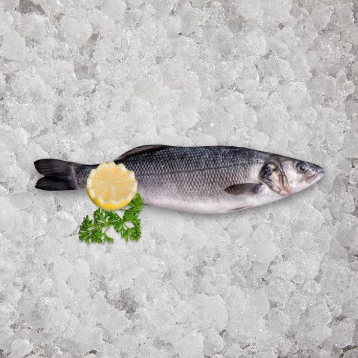 Fresh British Sea Bass