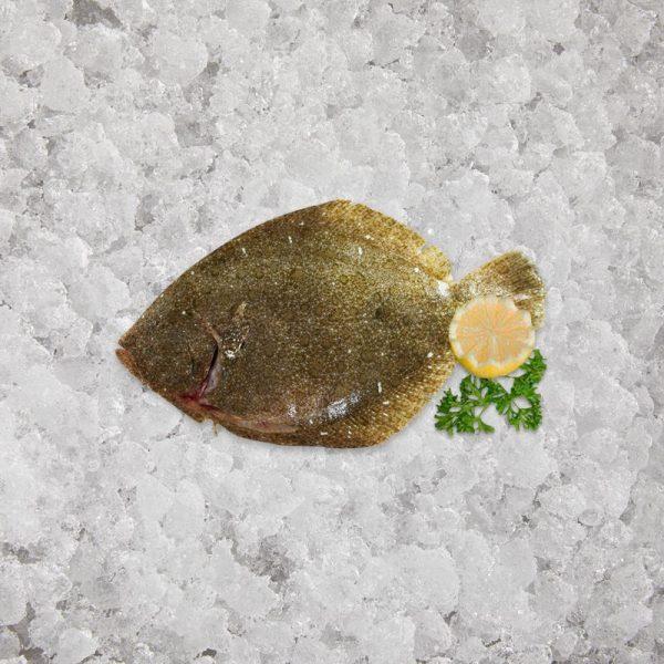 artisan_fishmonger_brill