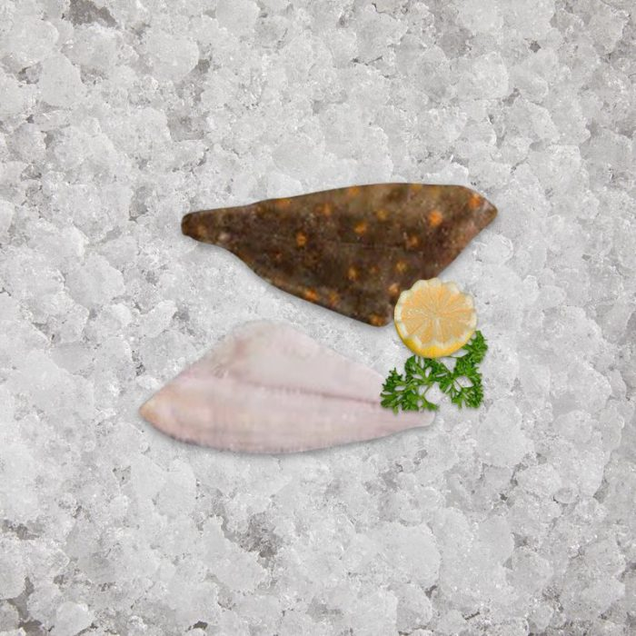 artisan_fishmonger_plaice_fillet