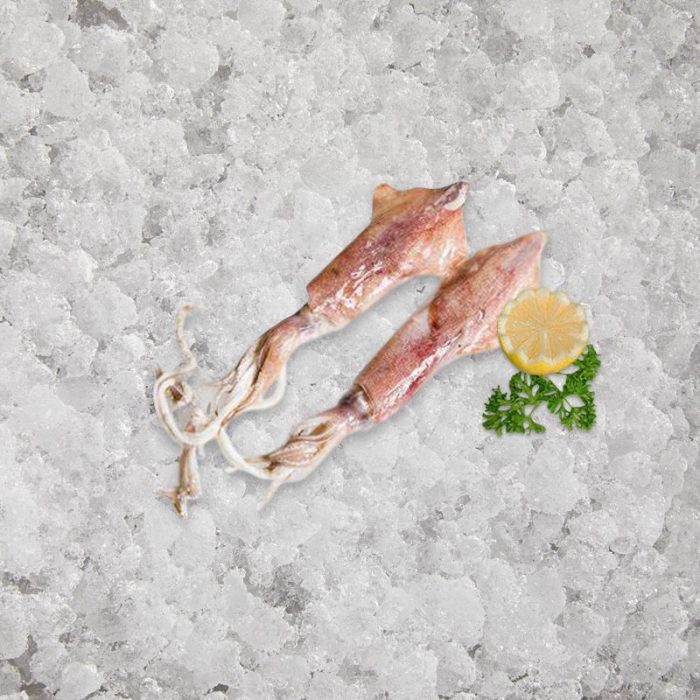 artisan_fishmonger_squid