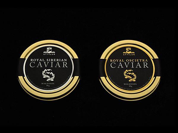 attilus_caviar_tasting_collection