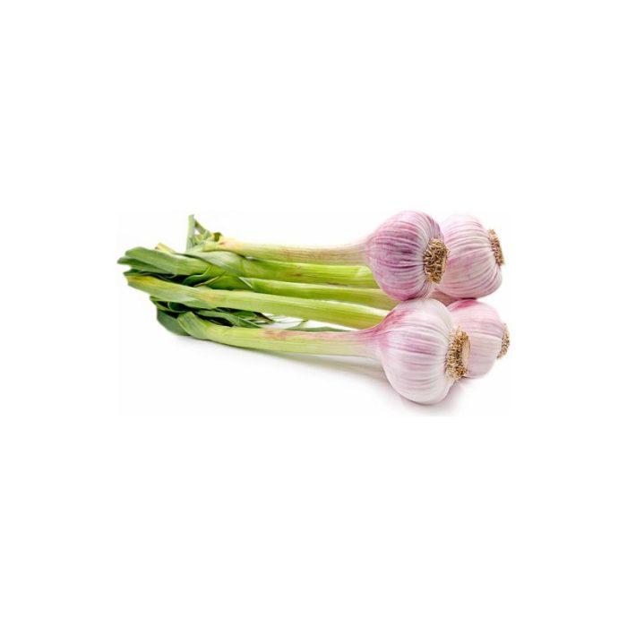 new_season_garlic_artisan_food_company