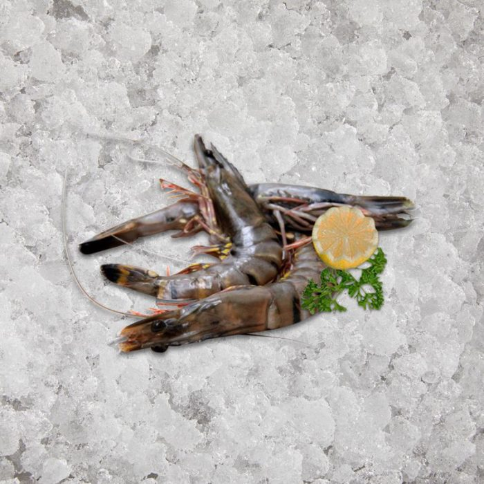 the_artisan_fishmonger_head_on_shell_on_black_tiger_prawns