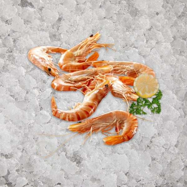 the_artisan_fishmonger_head_on_shell_on_cooked_crevettes