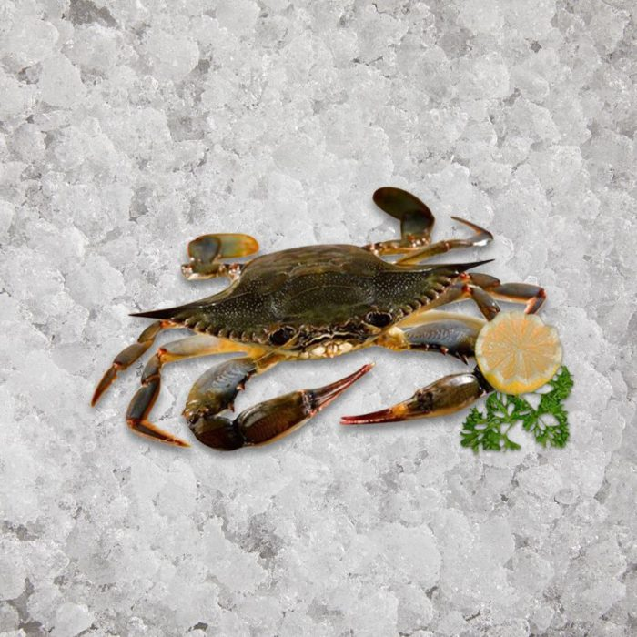 the_artisan_fishmonger_soft_shell_crab_jumbo_12_s