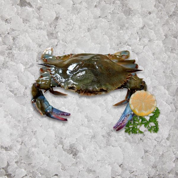 the_artisan_fishmonger_soft_shell_crab_whales_9_s