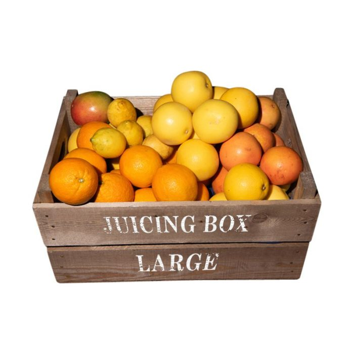juicing_large_food_boxes_the_artisan_food_company