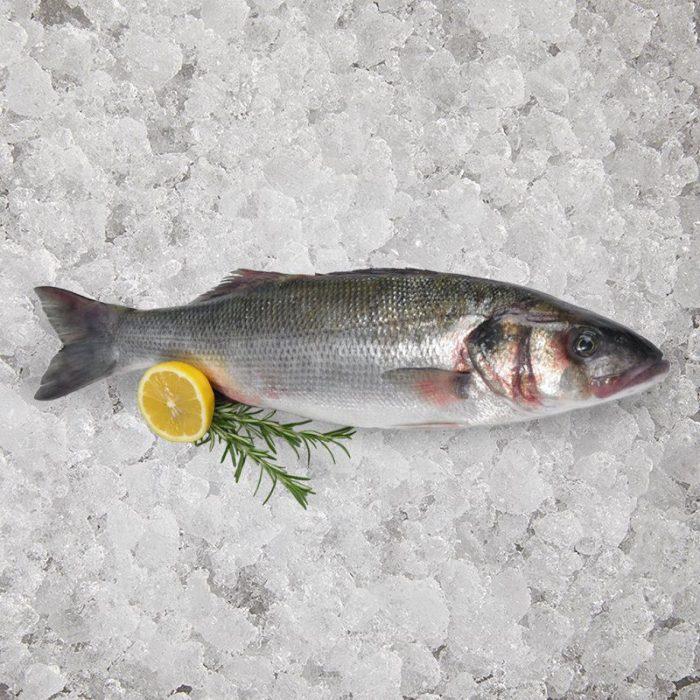 the_artisan_fishmonger_wild_sea_bass