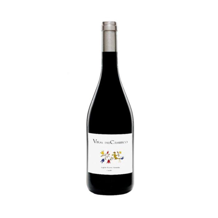 viñas_del_cámbrico_granito_rufete_blanca_the_artisan_winery