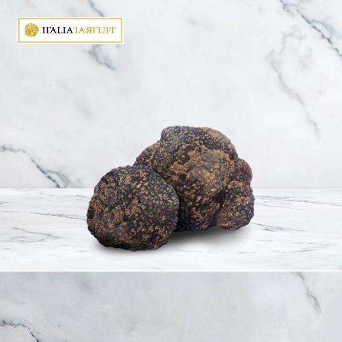 italiatartufi_summer_fresh_truffle