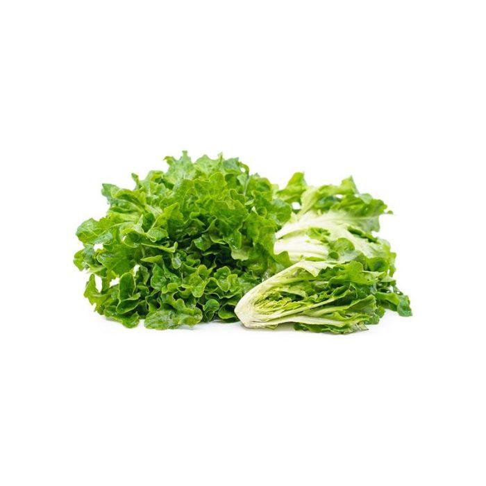 baby_green_oak_leaf_the_artisan_food_company