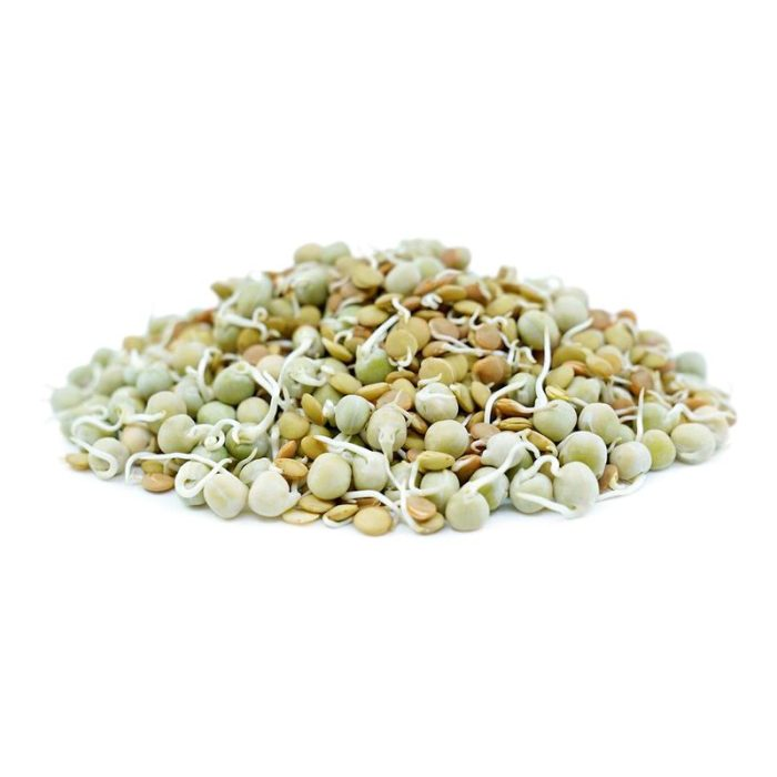 mix_beans_sprouts_the_artisan_food_company