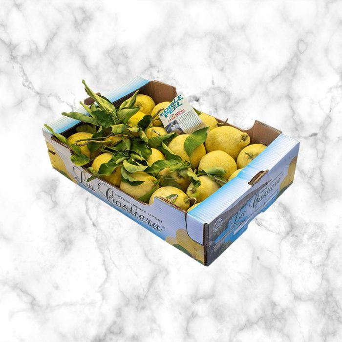 cedri_citrus_with_leaves_unwaxed_from_southern_italy